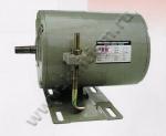 Индукционный мотор FSM 220 вольт